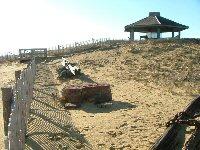Cape Cod CC Marconi site