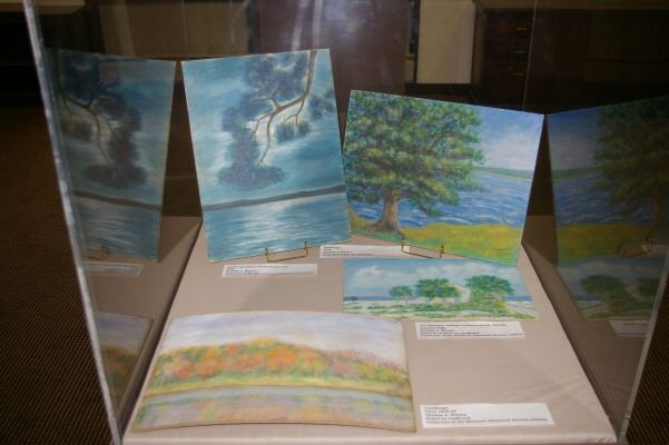 Watercolors illustrated by Mr. Watson on display