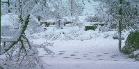 blizzard photo