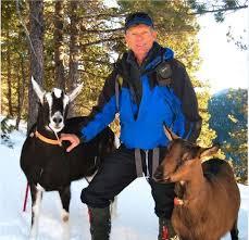 man standing besides goats